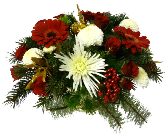 The Twinkling Stars Arrangement
